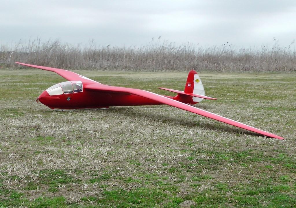 Slingsby T13